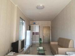 和华国际公寓 精装修 家私家电齐全 朝南 采光极好 看房方便
