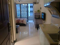 清城东方巴黎1室1厅50平米精装修