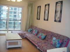 中海国际标准两房出租