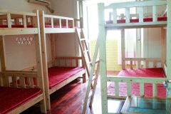 农业路怡丰新都汇 安馨女生公寓 房东直租图片真实