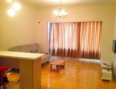 整租,梅园小区,1室1厅1卫,45平米