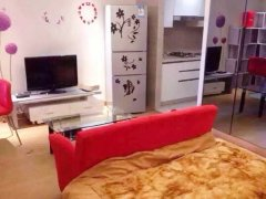 1室0厅1卫 房东直租 押一付一精装修小户型住宅