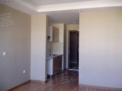 财智中心纯阳面一室一厅一卫精装修电梯房出租中