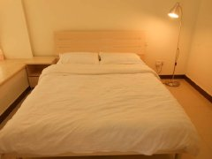 整租,新城明珠三期,1室1厅1卫,52平米