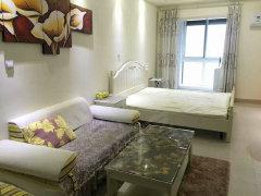 天鹅湖b区 星光广场精装单身公寓 首次出租 拎包入住
