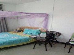 整租,正阳雅苑,1室1厅1卫,55平米