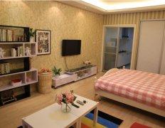整租,海悦公寓,1室1厅1卫,42平米