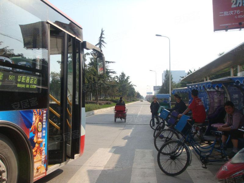 公交,蒂梵尼TOWN图片第11张